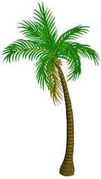 Finished palm tree from The Rumor